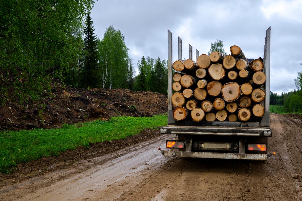 puutavarakuljetus soratiellä